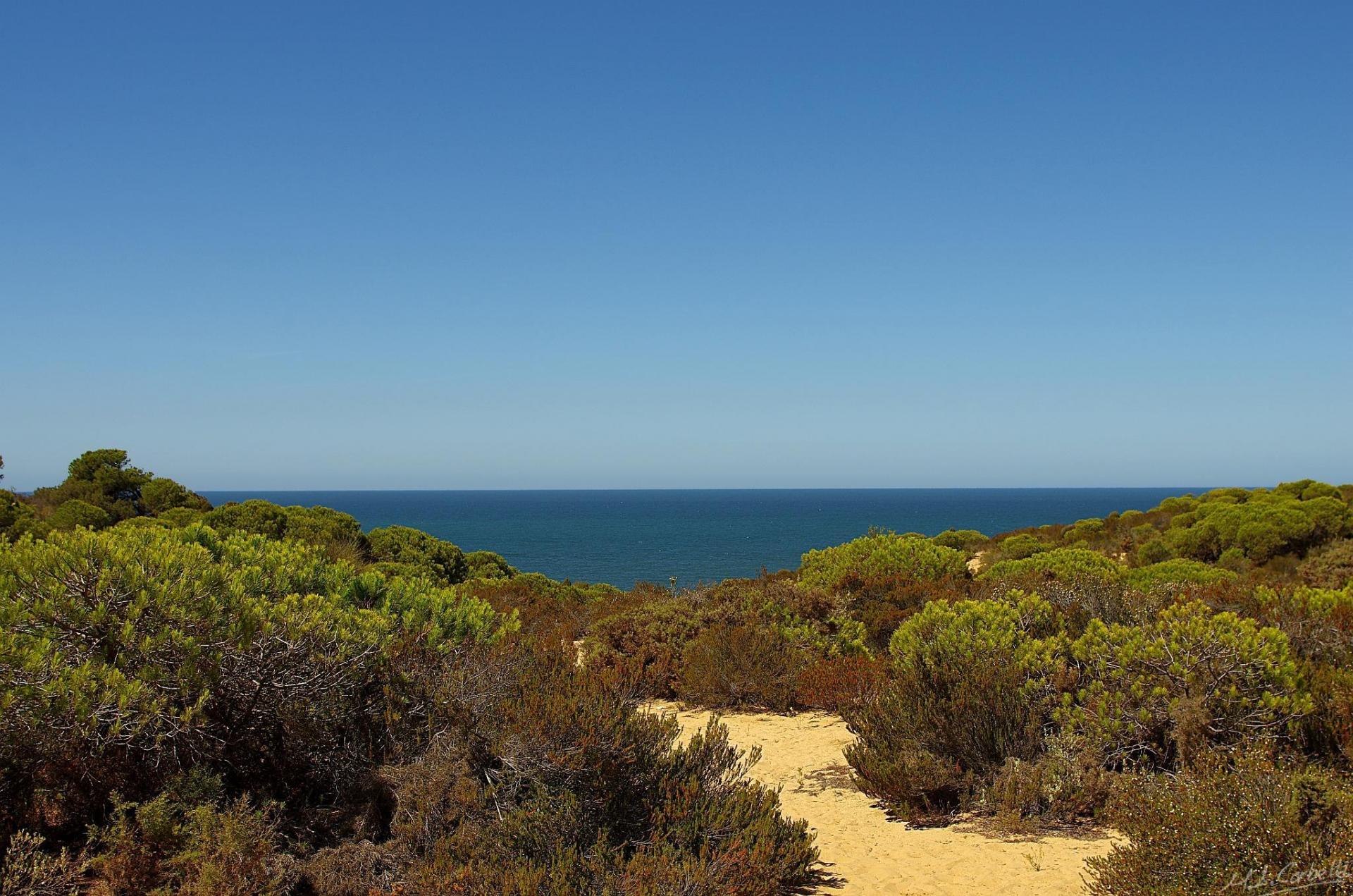 ASPERILLO BEACH